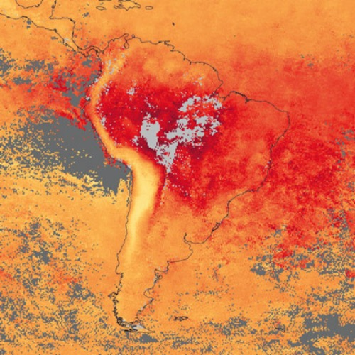 Wildfires in South America*María I Manta and Patricio Sanhueza report on the current situation and trends of wildfires in South America, and the Amazon Basin as a whole