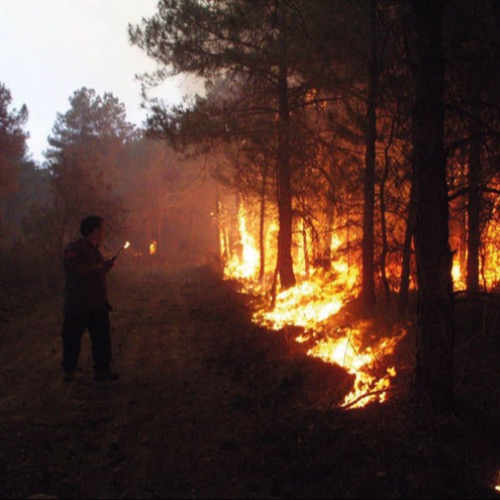 The changing face of wildfires*As we enter a new era of mega-fires, Marc Castellnou i Ribau and Marta Miralles Bover describe a change in thoughts on wildfire management
