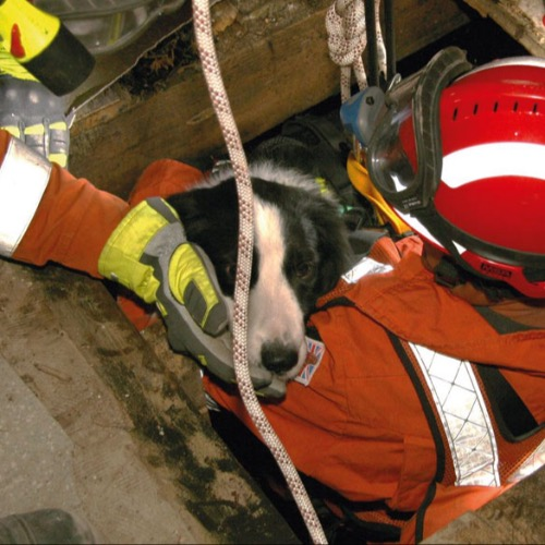 International USAR team classification system*The UK International Search and Rescue team is the first to be reclassified by the UN. Peter Crook explains the process